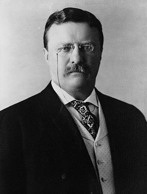 ca7fPresident Theodore Roosevelt2C 1904 Far Better It Is…